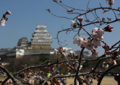 Himeji castle 4