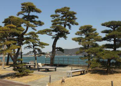 Mikimoto pearl island 2