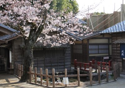 Toei studio park 3